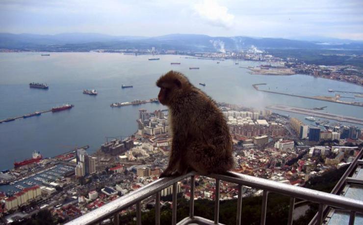 mytravelgram gibraltar travel story photo